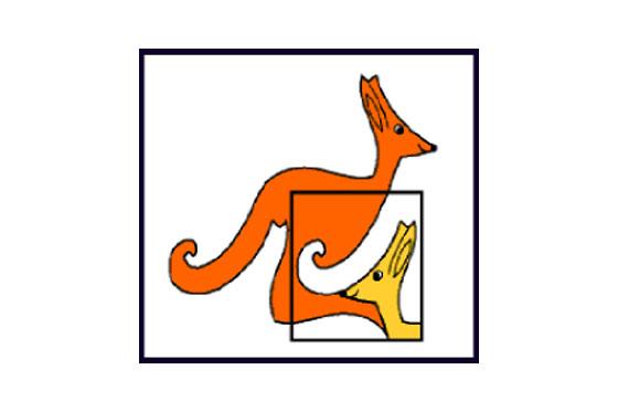 Mednarodni matematični kenguru