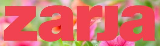 Članek o Zaključni reviji SFŠ v reviji Zarja